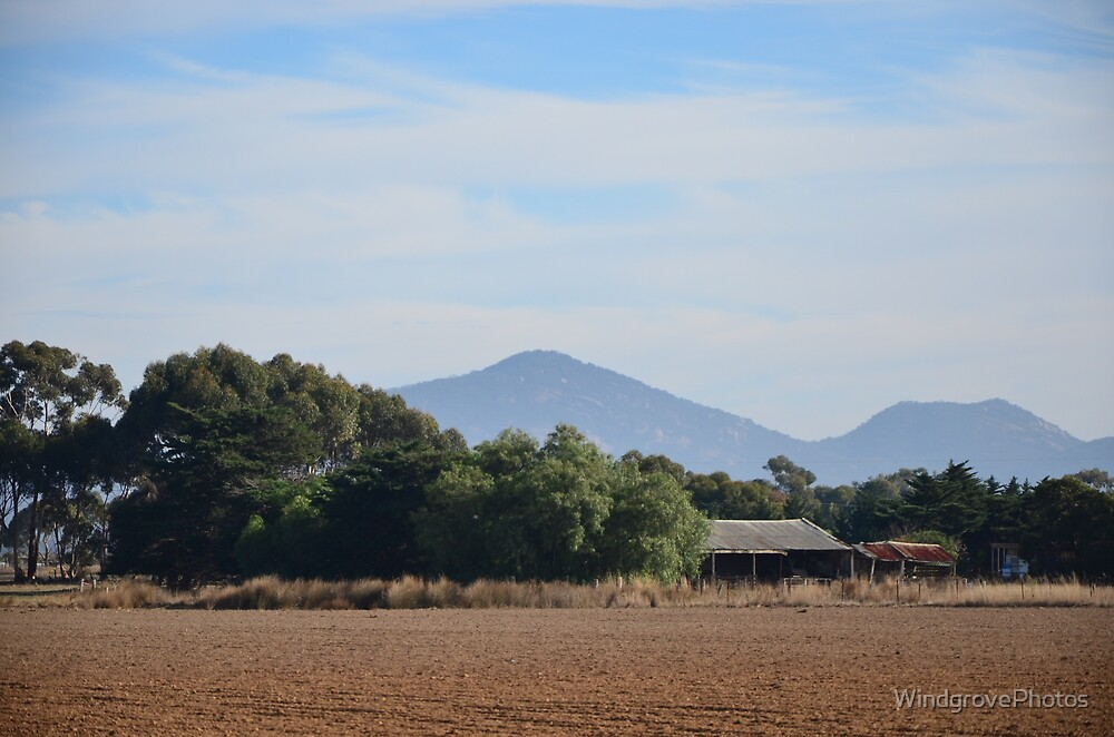 Windgrove Farm looking to the You Yangs by WindgrovePhotos