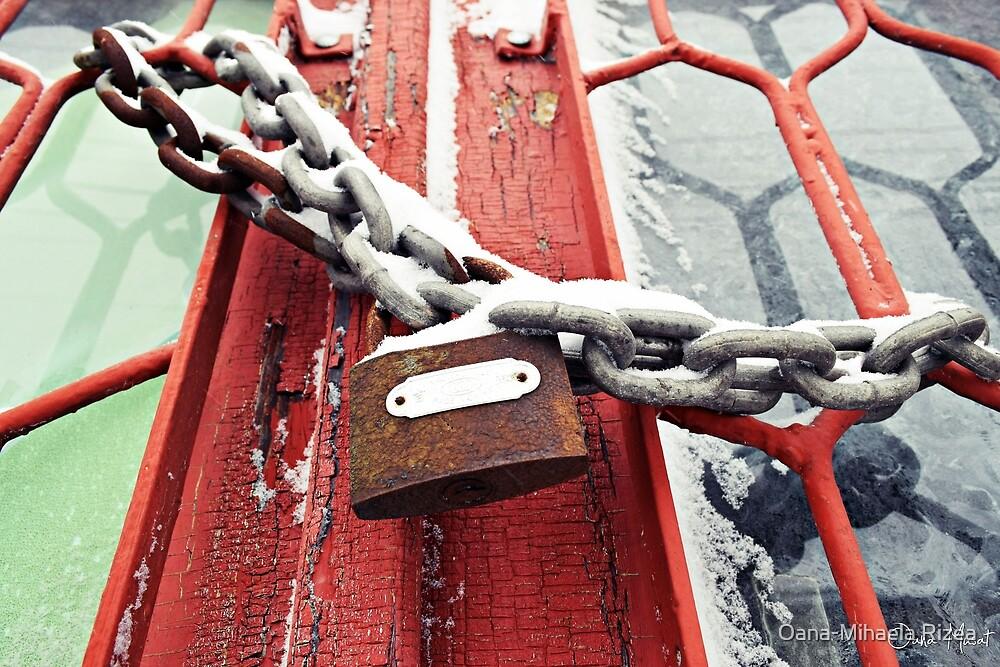 Lock by Oana-Mihaela Rizea