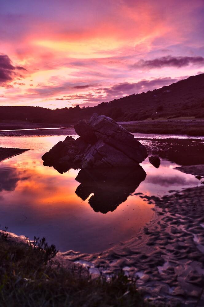 Gower Bay Glory by TreeRoot
