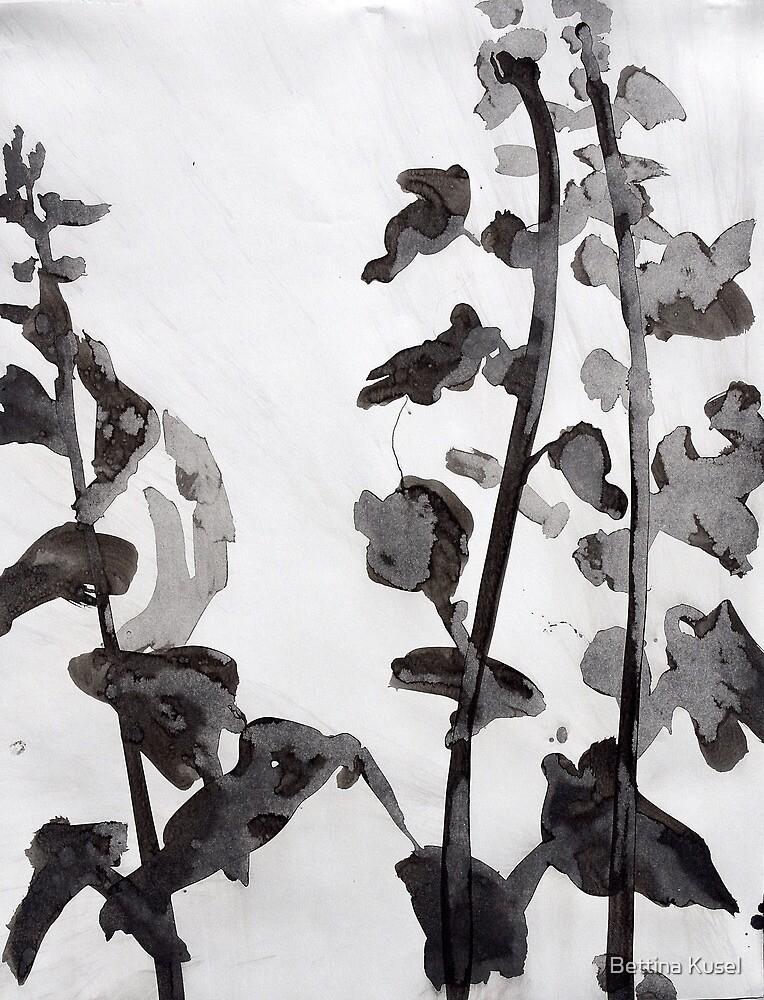 stockrosen by Bettina Kusel