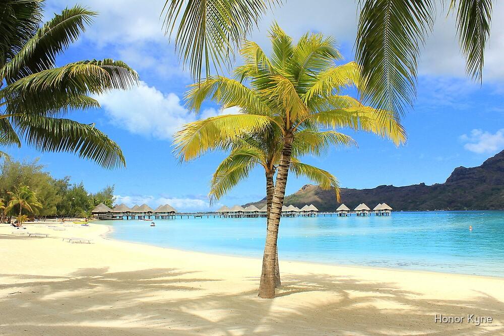 Bora Bora Beach and Palms by Honor Kyne