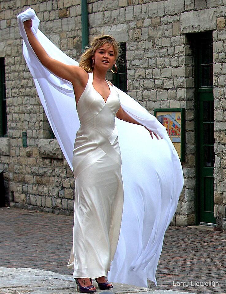 Fashion Always.............. by Larry Llewellyn