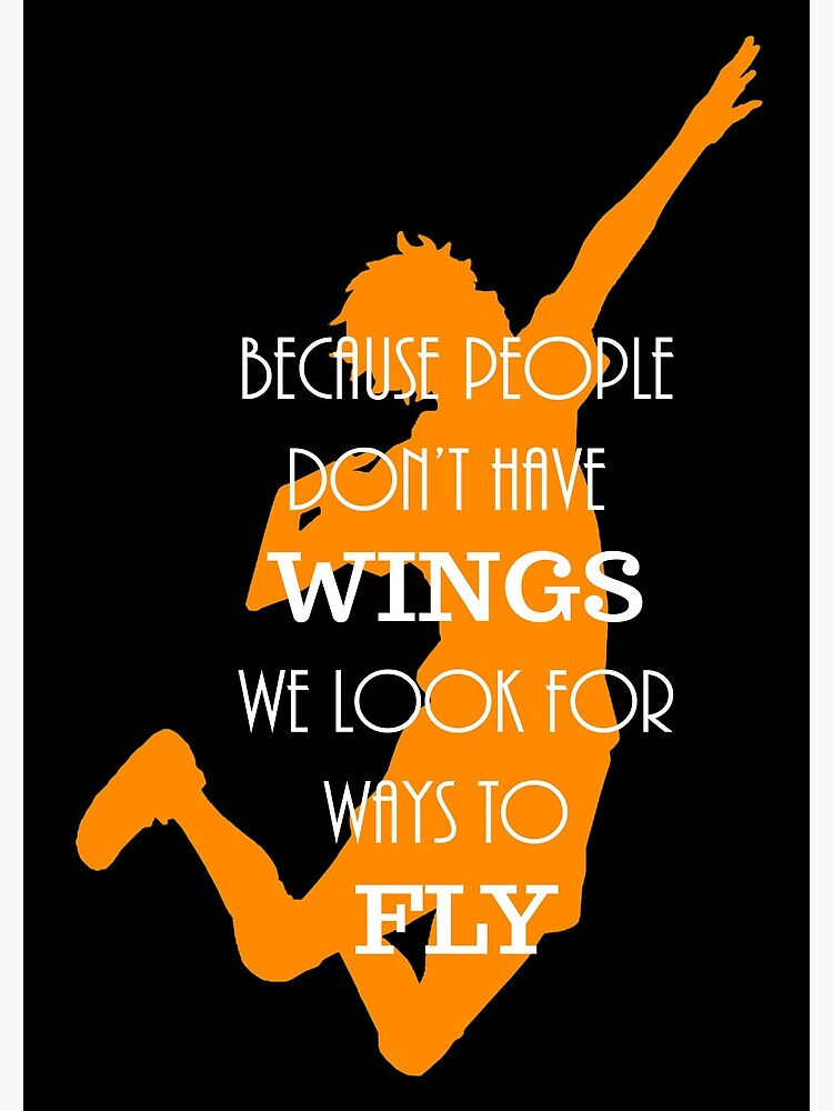 Haikyuu!! Because people don't have wings, we look for ways to fly. by ninasblue