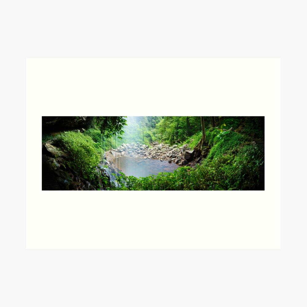 Crystal Shower Falls, Dorrigo National Park, New South Wales, Australia Art Print