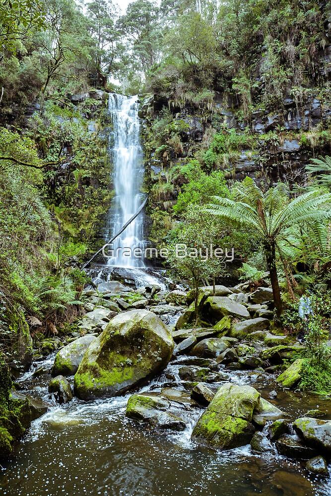 Australian Otway Waterfall by Graeme Bayley