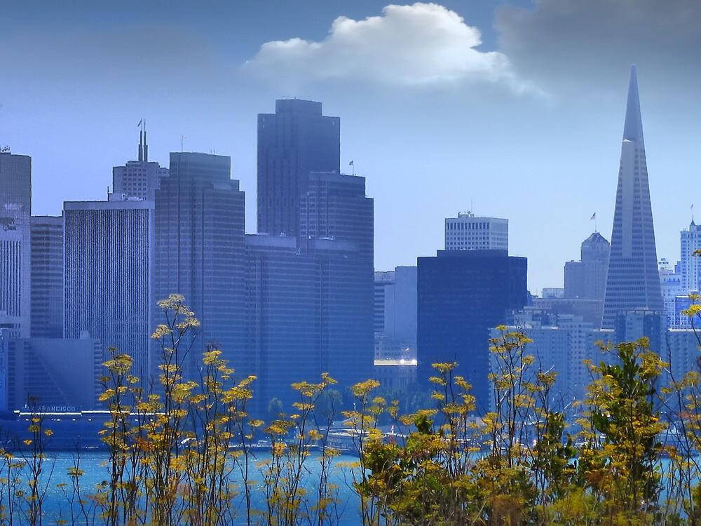 SF Cityscape by David Denny