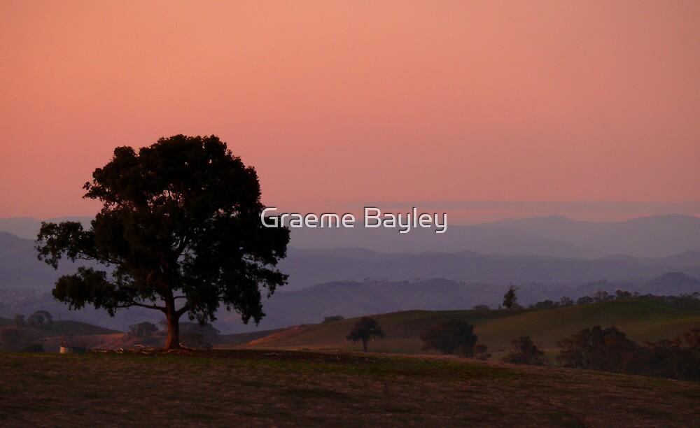 Australian Landscape at Dusk by Graeme Bayley