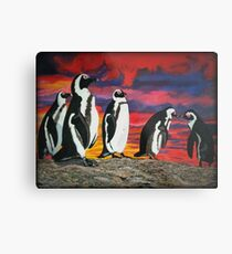 African Penguins Metal Print