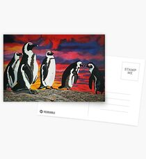 African Penguins Postcards
