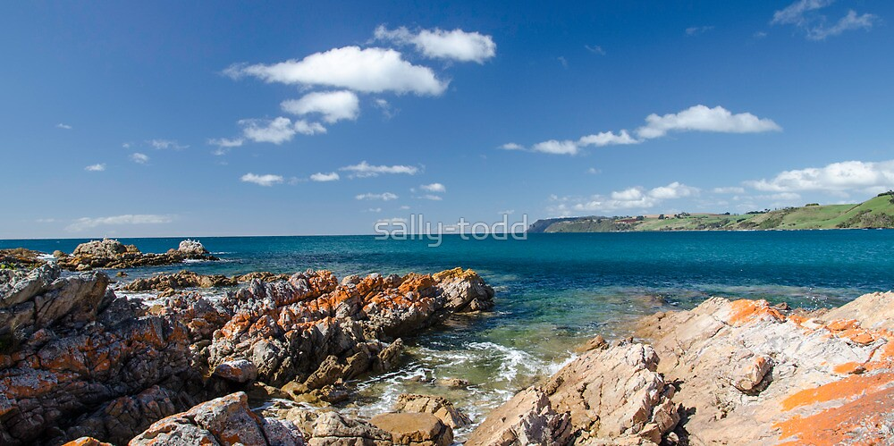 Boat Harbour Beach, Tasmania Australia. by sally-todd