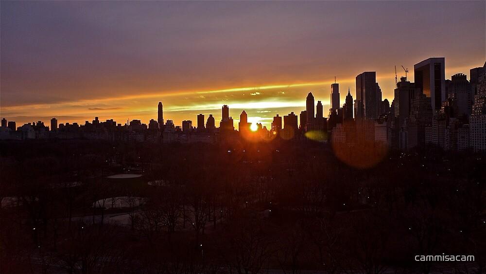 Central Park Sunrise by cammisacam