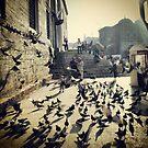 The Birds by RoamingRoan