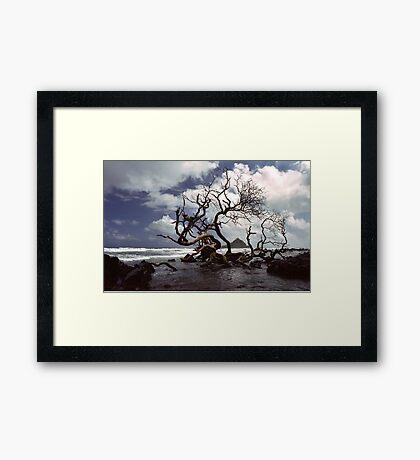 Hana Coast Framed Print