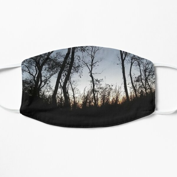 #Sky #Tree #NaturalLandscape #Nature #Branch Natural environment Cloud Wilderness Evening Morning Sunset Night Flat Mask