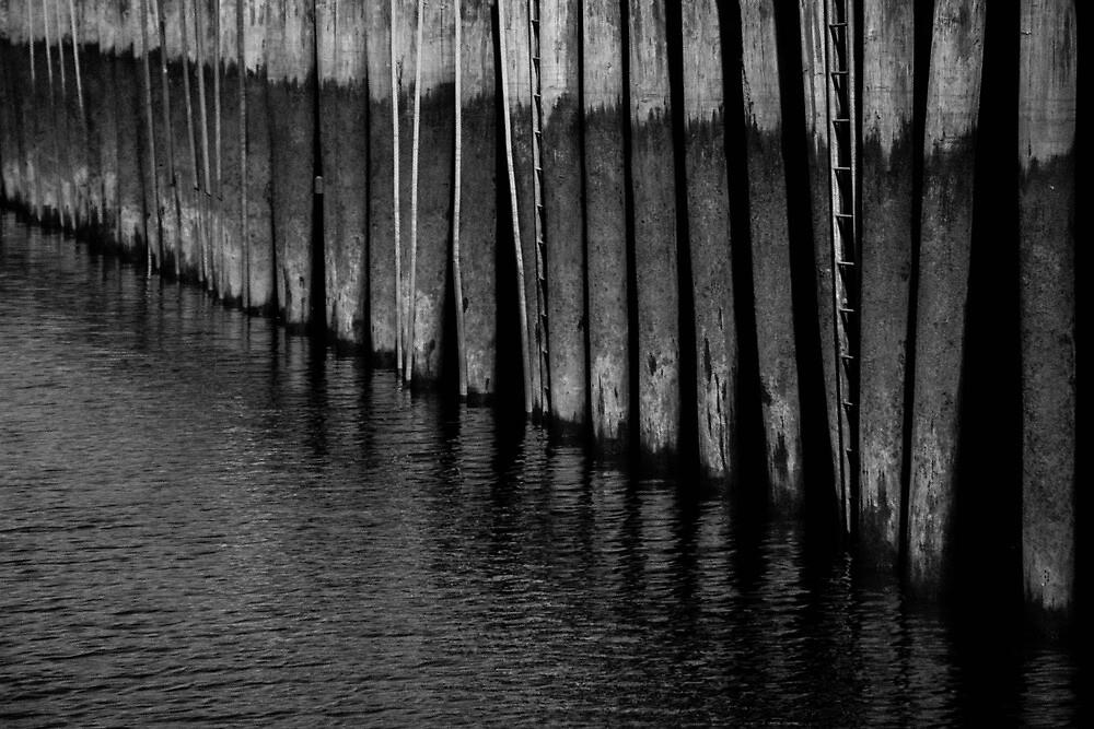 Wharf by Nicole McBride