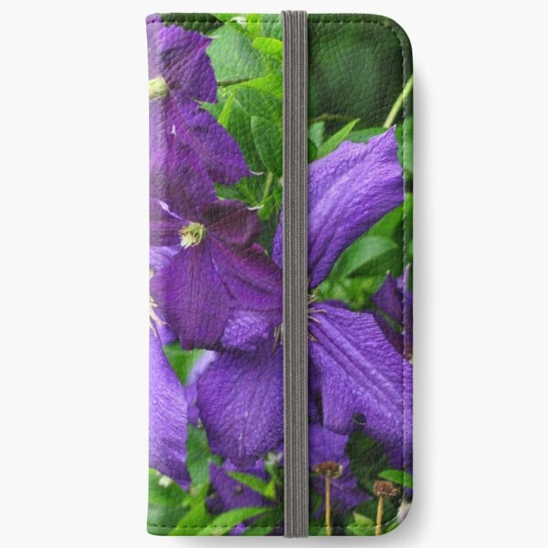 Clematis vines among wildflowers  iPhone Wallet