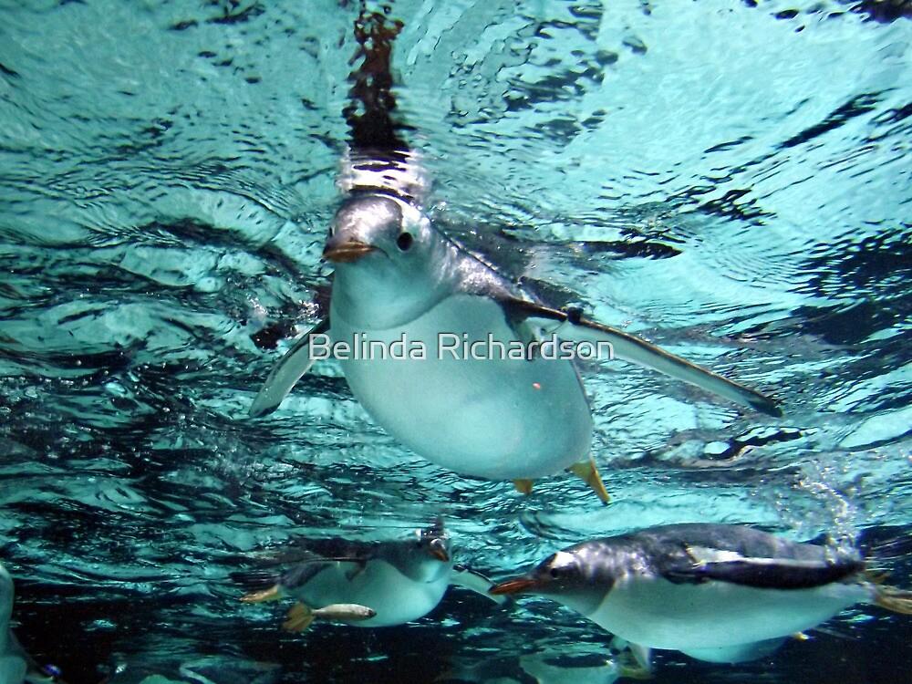 Floating Around by Belinda Richardson
