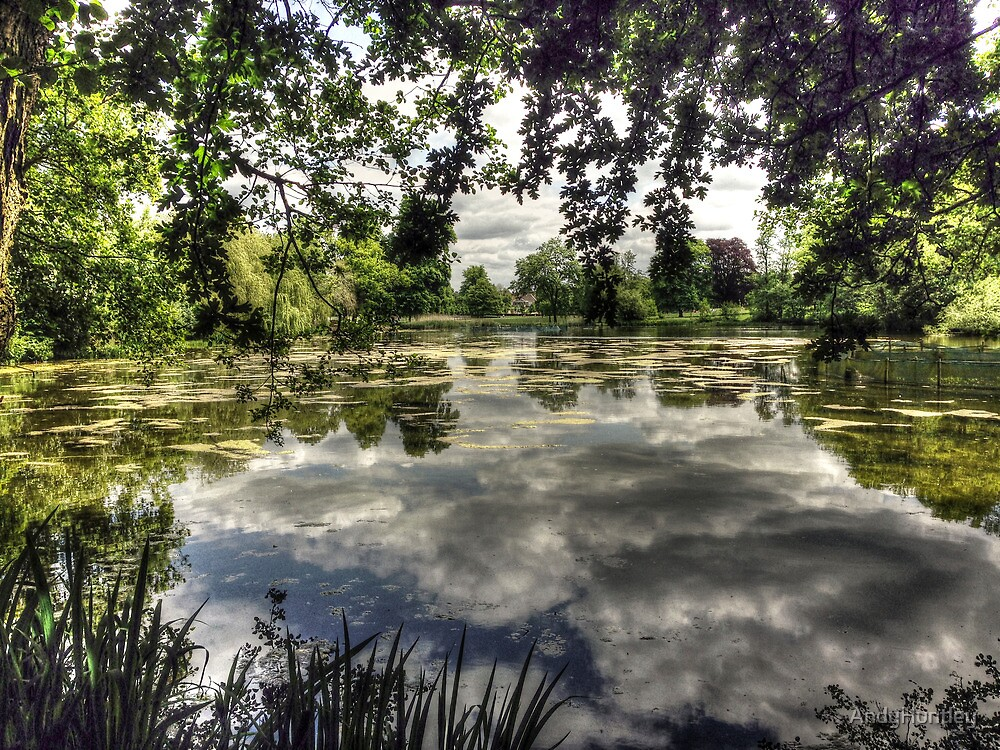 Reigate Priory Lake by AndyHuntley