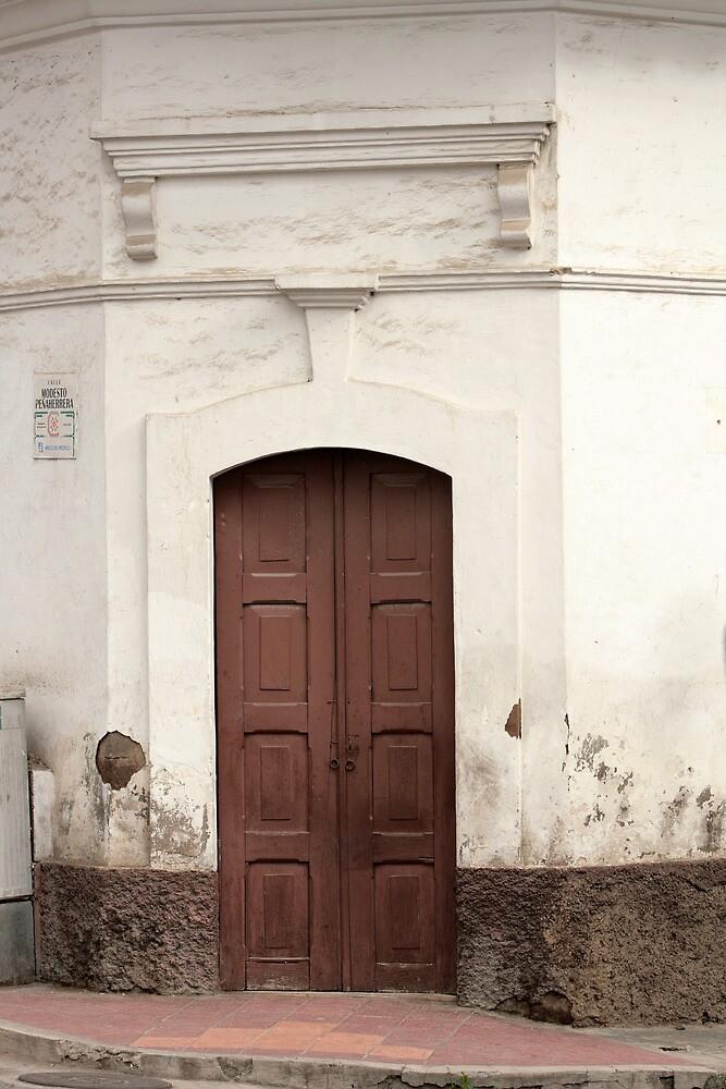 Brown Wooden Door by rhamm