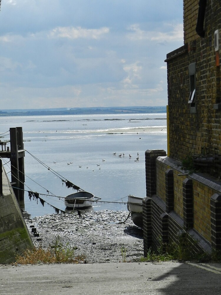 view of the estuary by TOFFS