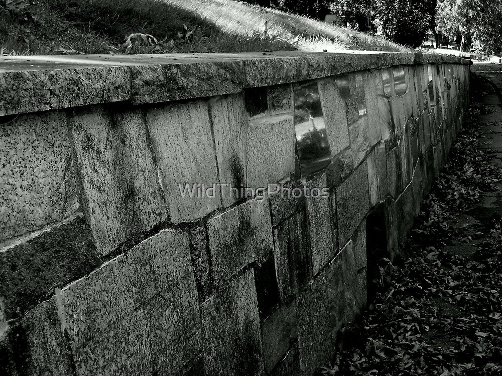 Walled by WildThingPhotos