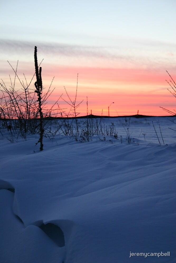 Beautiful Winter by jeremycampbell