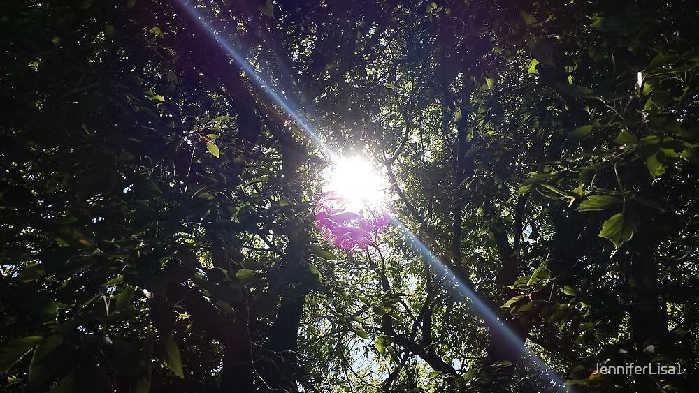 sunny day by JenniferLisa1