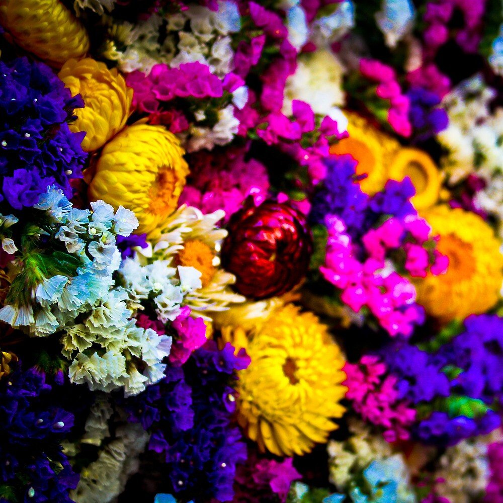 The Flowering Market by EmmJW