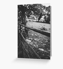 Black & White countryside Greeting Card