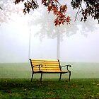 Foggy Morning by Gopuraj Soundrarajan