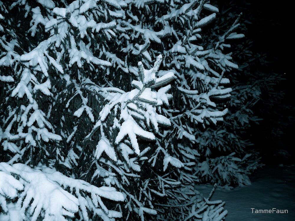 Winter Wonderland by TammeFawn