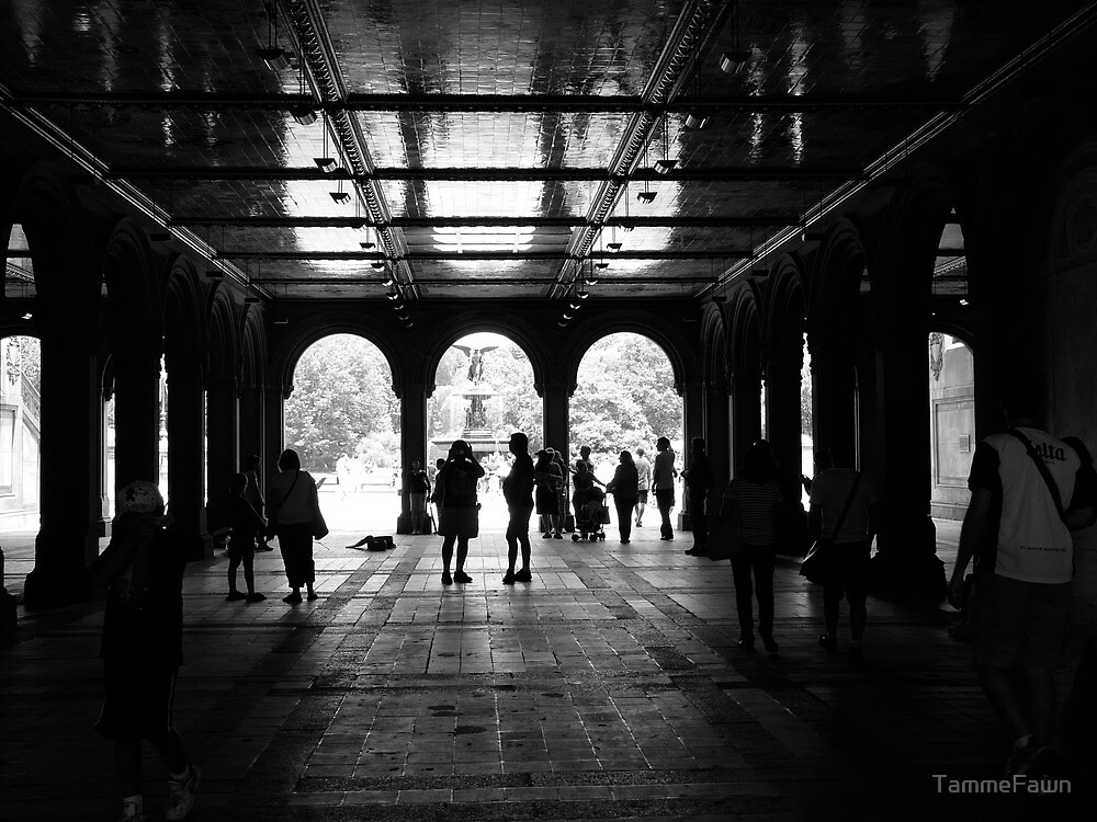 The Archs at Central Park by TammeFawn