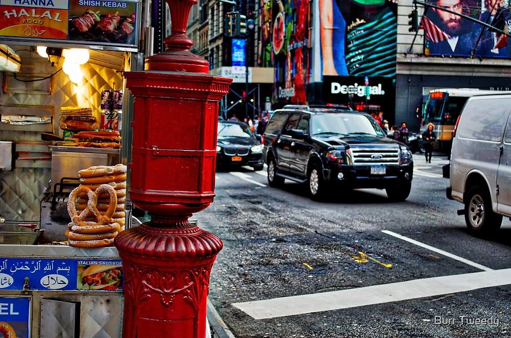 New York 1 by Burr Tweedy