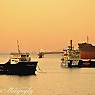 Sunrise over the Harbour by Kate0011