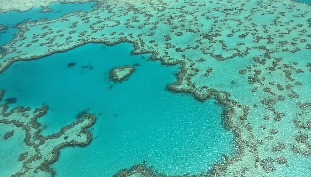 Heart Reef - Great Barrier reef by PasqualeG