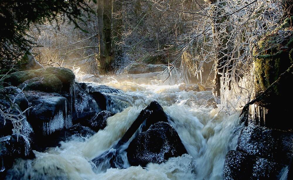 Swedish winter wonderland in ice by Steve Björklund