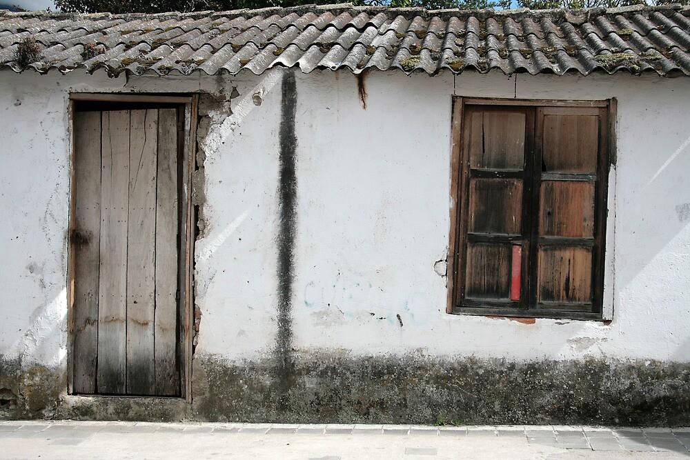 White Window and Door by rhamm