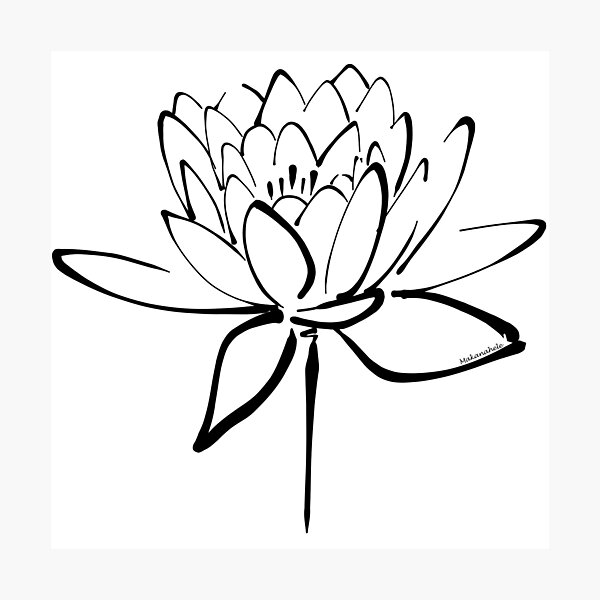 Lotus Flower Calligraphy (Black) Photographic Print