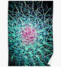 EXPLOSION OF LINES!!! Flowers Poster