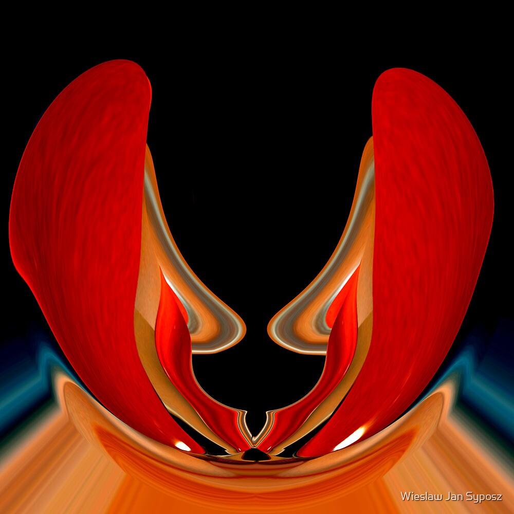 mostly red 2 by Wieslaw Jan Syposz