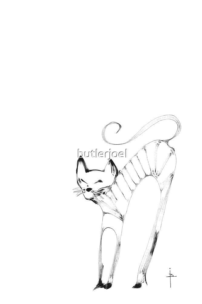 Cat by butlerjoel