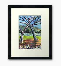 Sketching Trees Framed Print