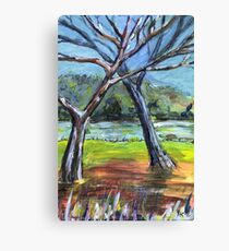 Sketching Trees Canvas Print