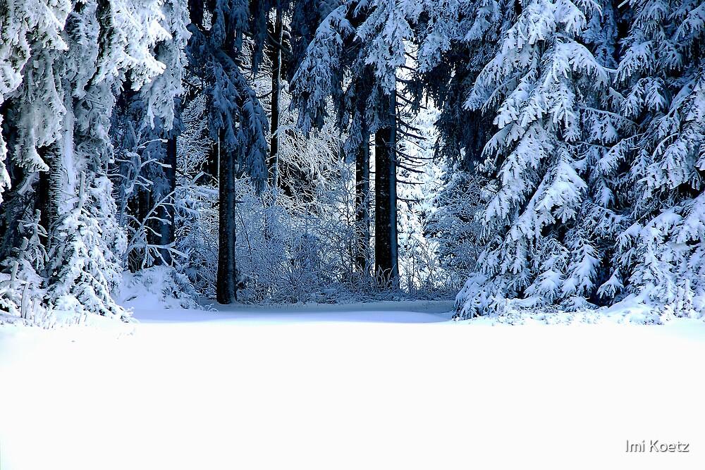 Snow Paradise by Imi Koetz