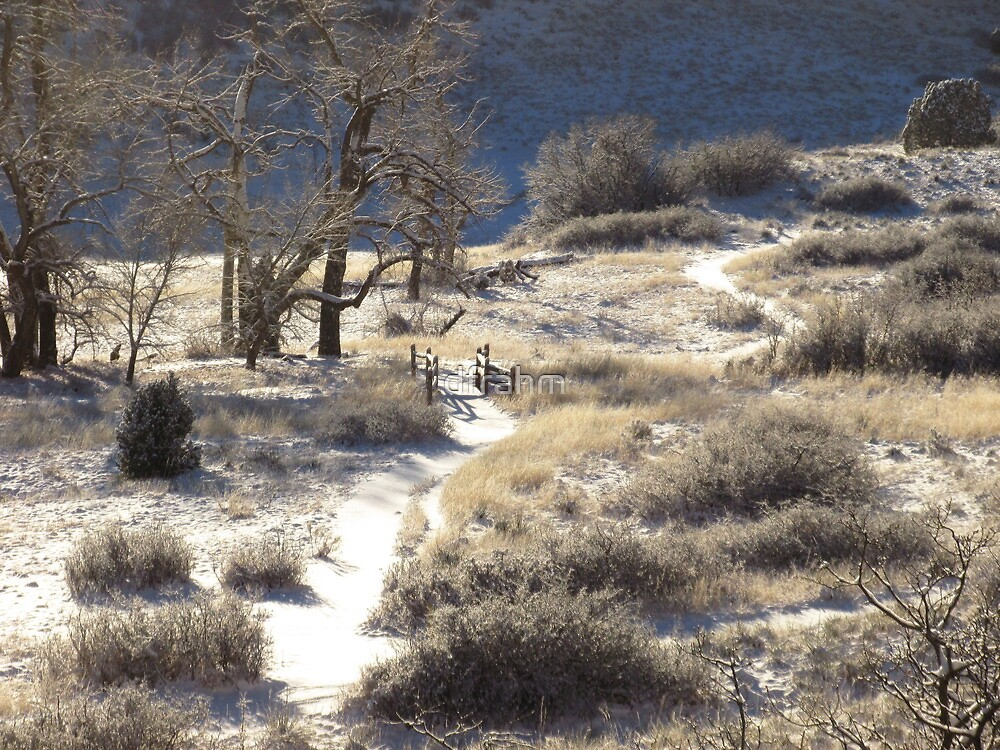 Crooked Path....Garden of the Gods...Colorado Springs by dfrahm