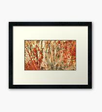 Middle Earth Framed Print