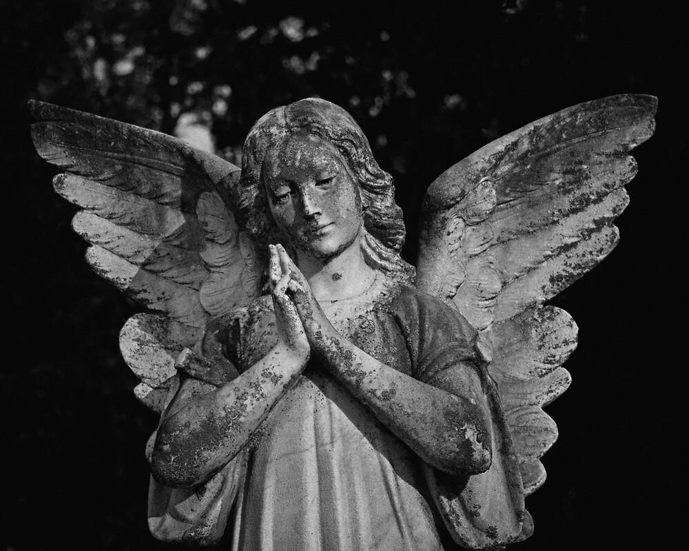 Dark Angel by DaveEdens
