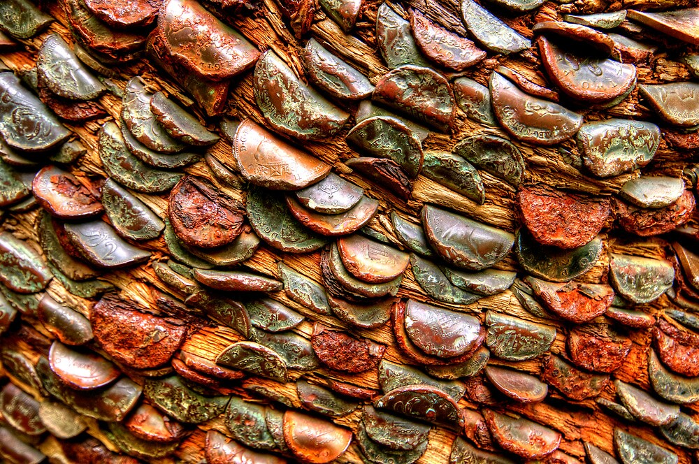 The Money Tree by Stephen Smith