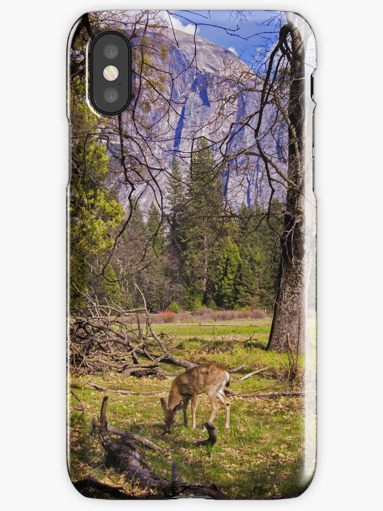 Deer and mountain in Yosemite by Steve Björklund