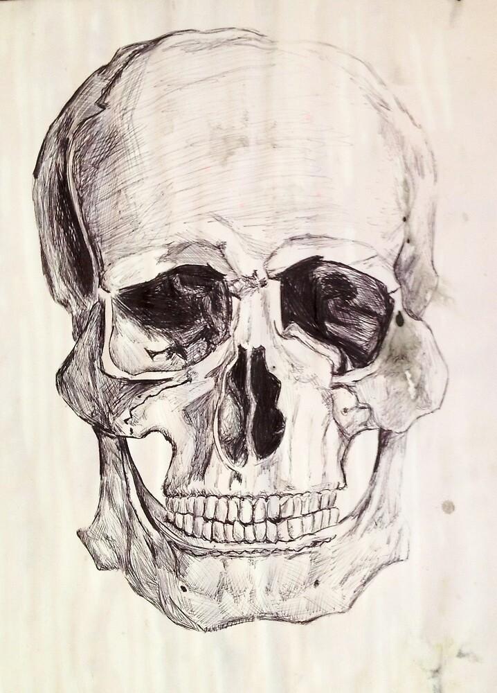 Skull by jamaland1